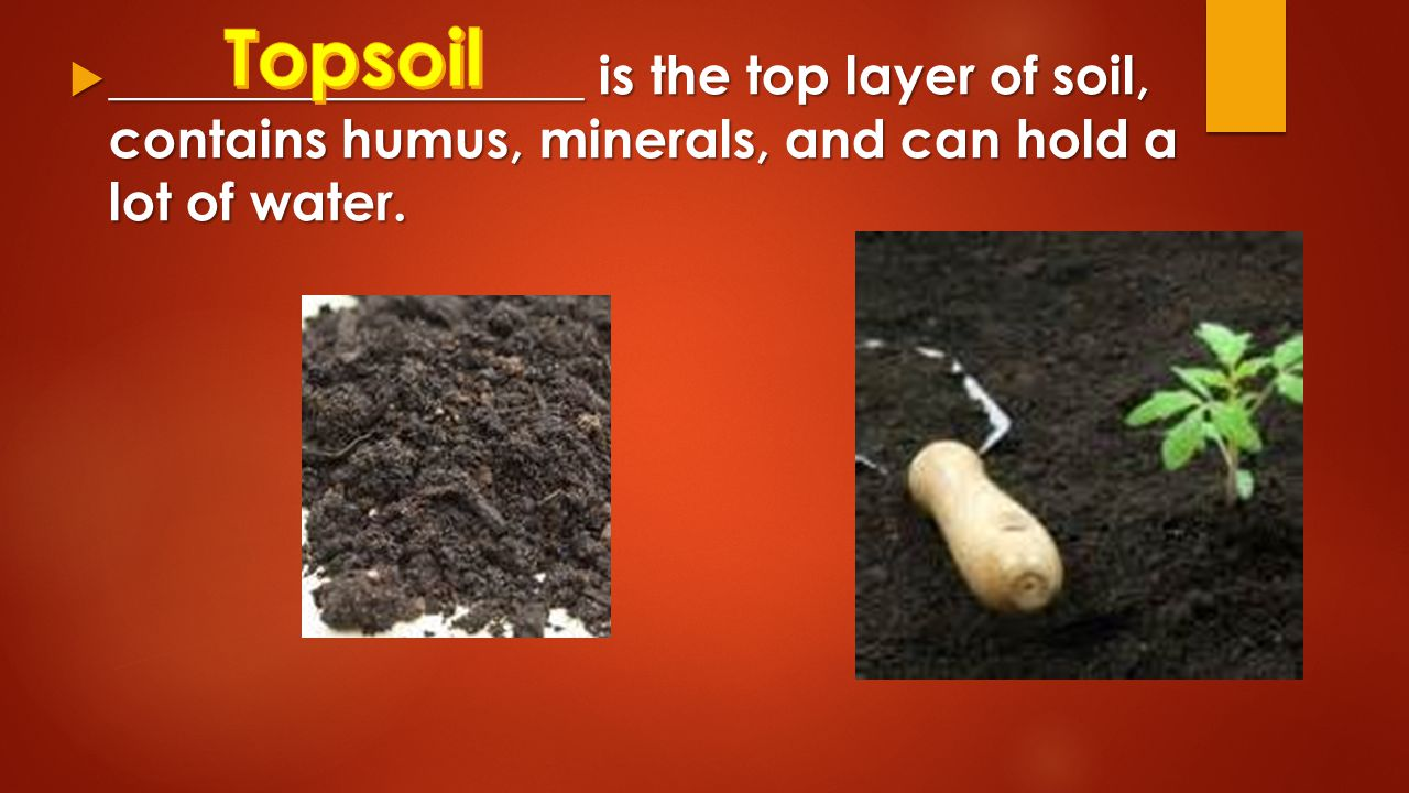 Rocks minerals and soil review ppt video online download for What is rich soil called