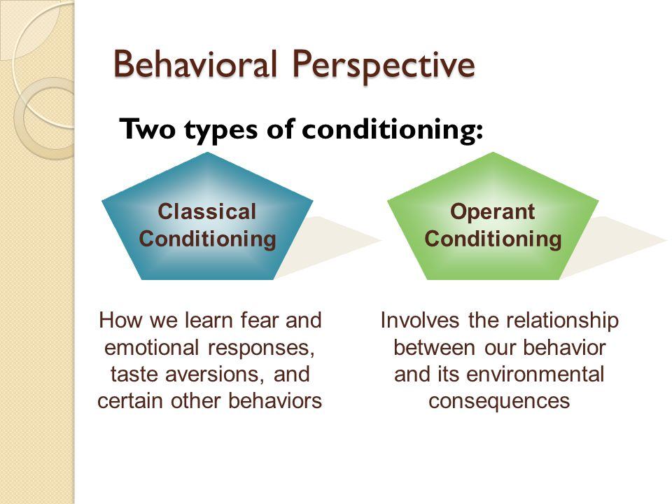 relationship between consequences of behavior and