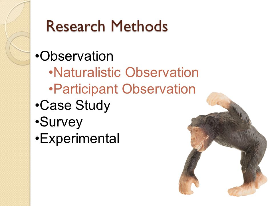 naturalistic observation on exercise Naturalistic observation is a way of observing applicants in their own natural environment without the contestants realizing the observers are present.