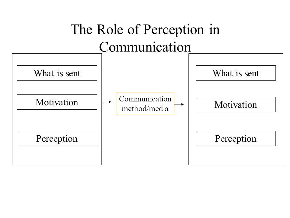 What Is the Role of Perception in Learning?