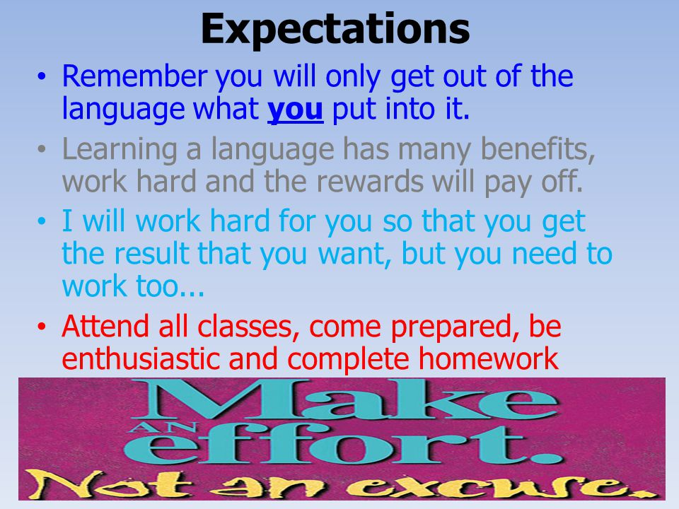Expectations Remember you will only get out of the language what you put into it.