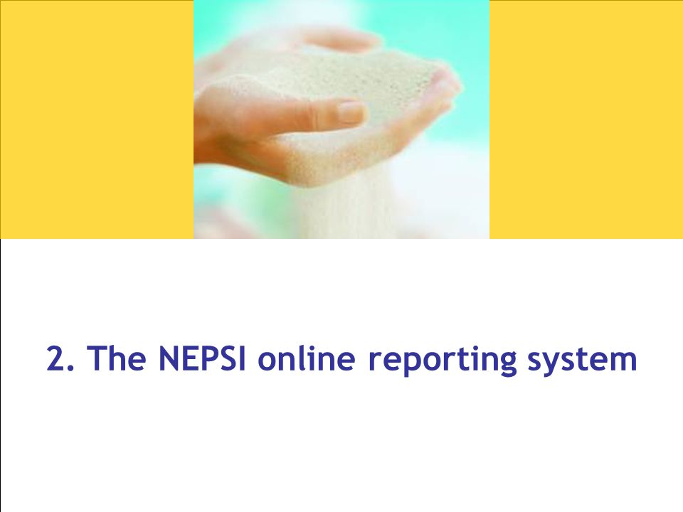 2. The NEPSI online reporting system