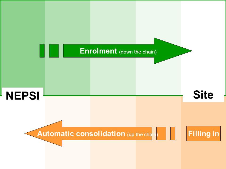 Site NEPSI Enrolment (down the chain)