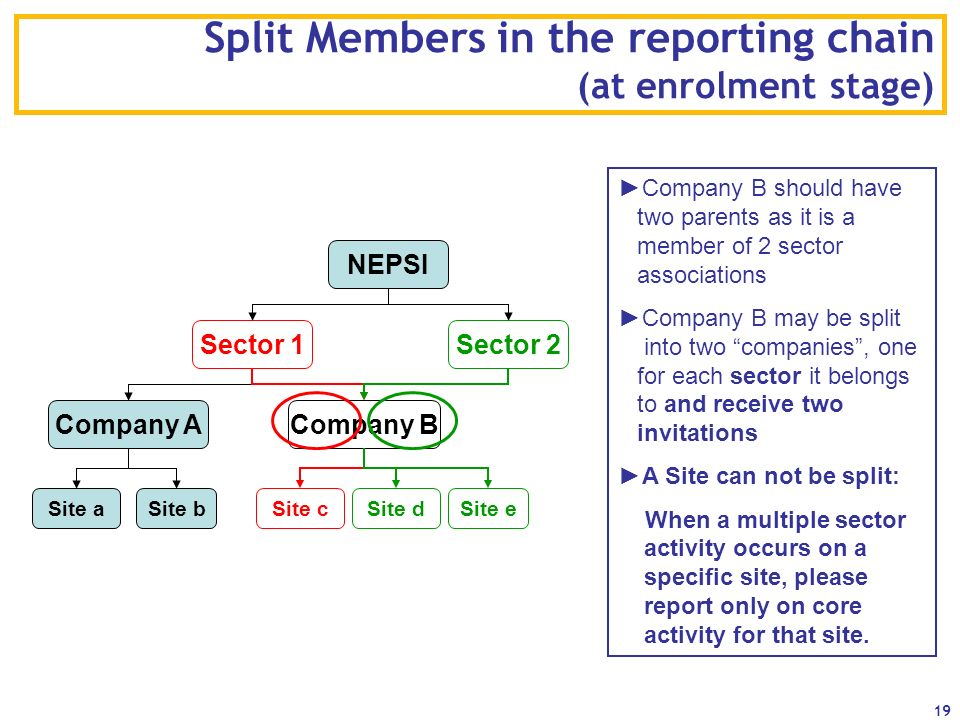 Split Members in the reporting chain (at enrolment stage)