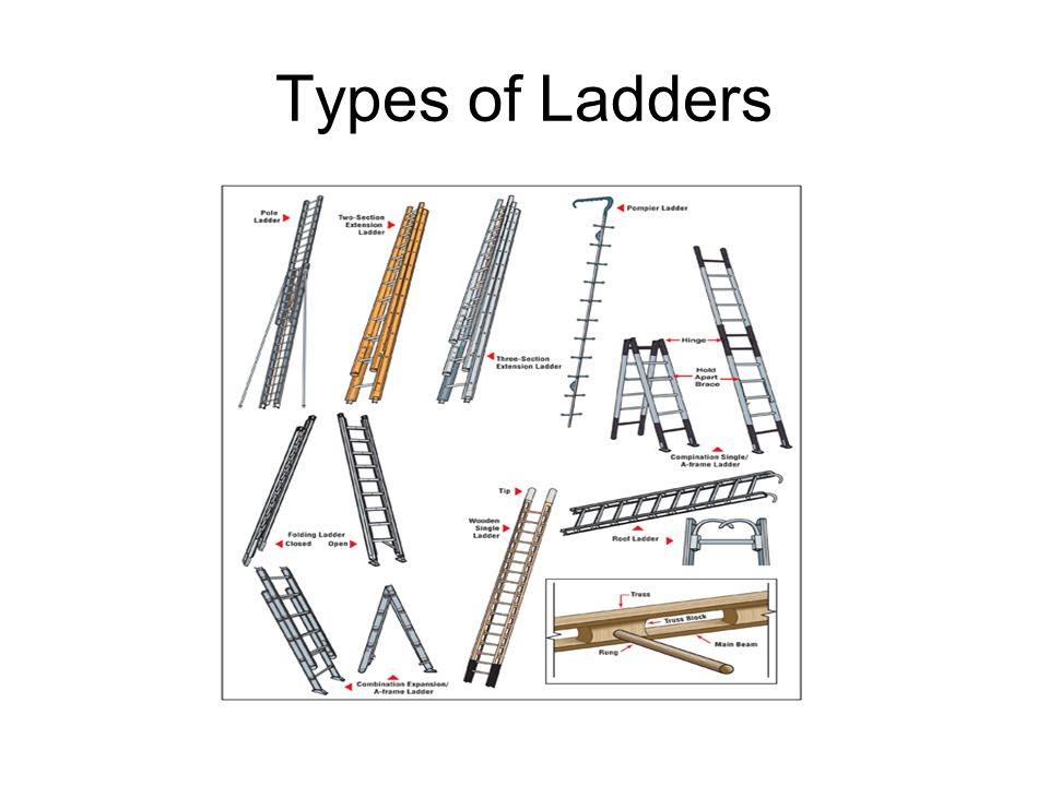 parts of a fire ladder