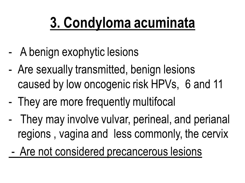 3. Condyloma acuminata A benign exophytic lesions