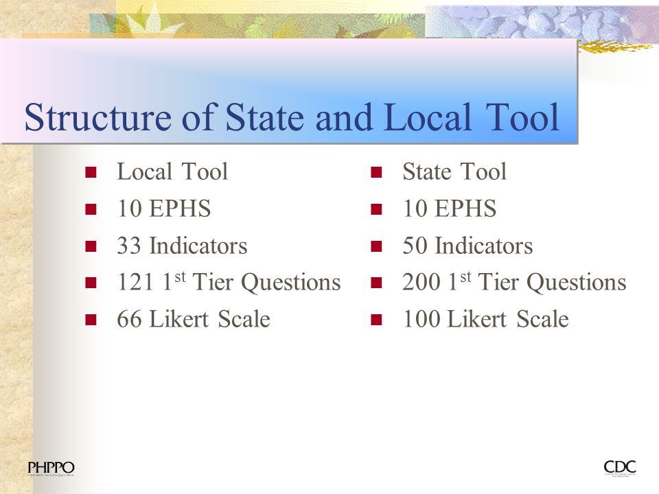 Structure of State and Local Tool