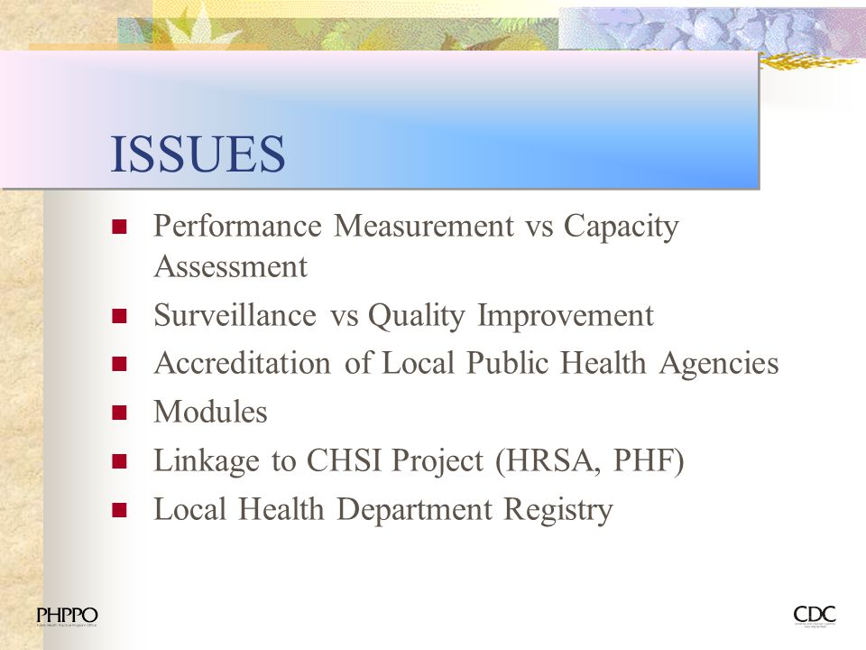 ISSUES Performance Measurement vs Capacity Assessment