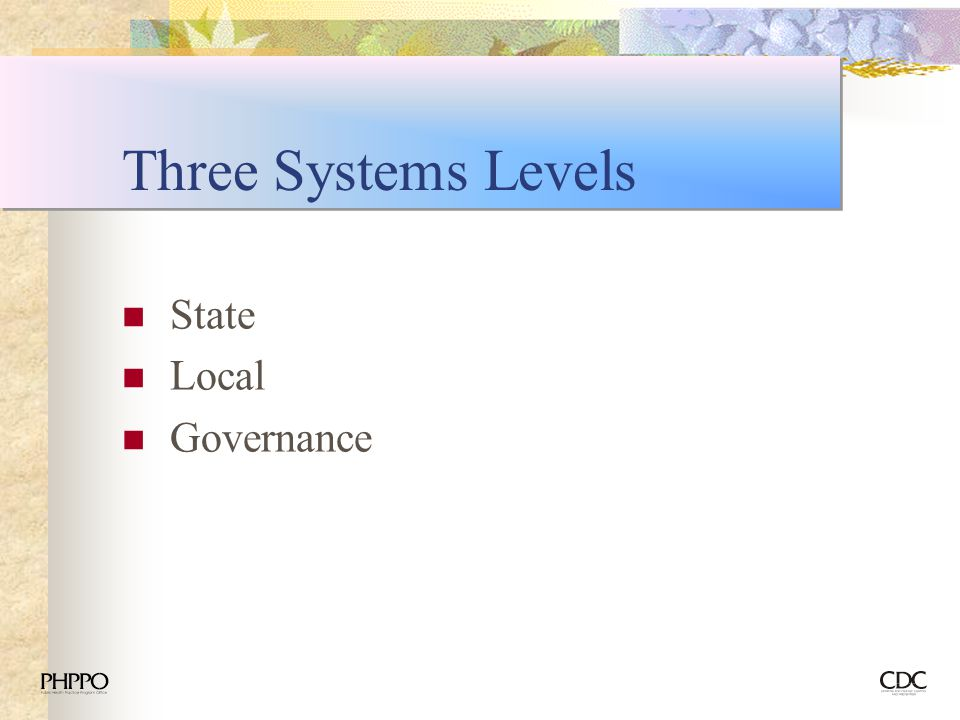 Three Systems Levels State Local Governance