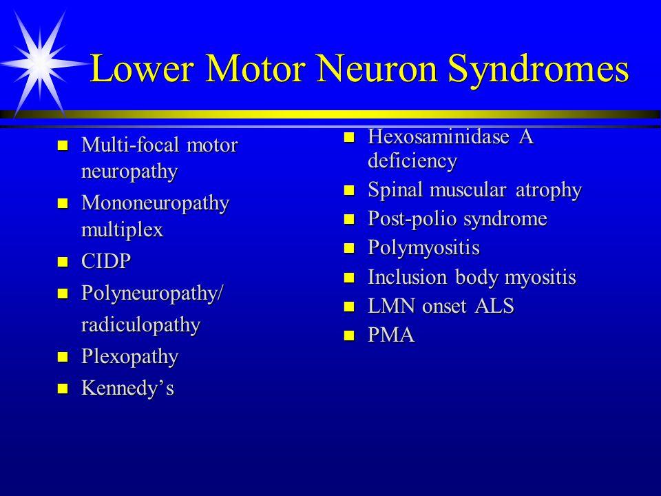Motor neuron diseases ppt video online download for Lower motor neuron diseases