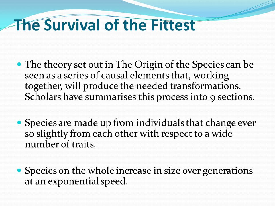"survival of the fittest philosophy essay Work on the "" origin of species "" does not purport to be philosophical  fourth,  here comes in the law of natural selection, or the survival of the fittest that is,."