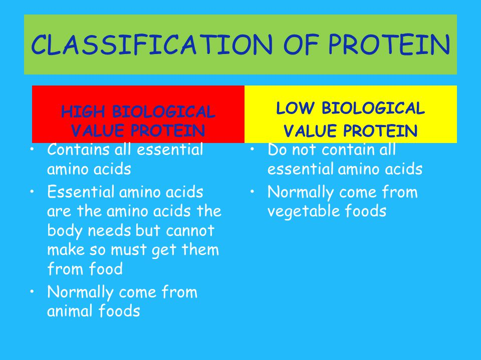 Examples Of High Biological Value Protein Foods