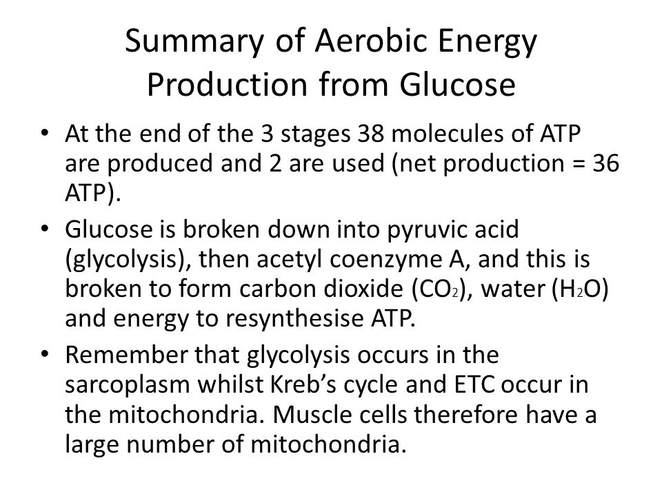 aerobic exercise summary The purpose of this study was to investigate the role of aerobic  has not  received proper attention by exercise and cognition researchers here.