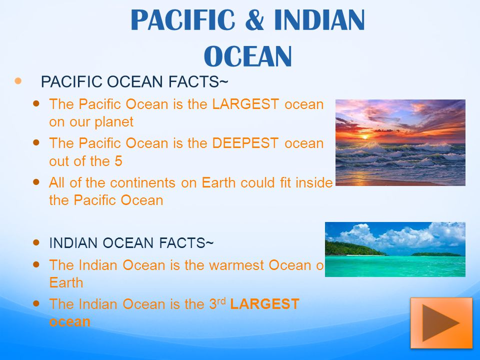 OCEANS OF THE WORLD ALLISON MOORE Ppt Video Online Download - 5 largest ocean in the world