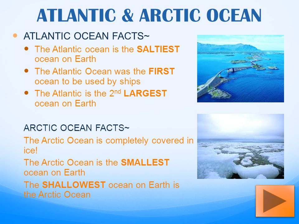 OCEANS OF THE WORLD ALLISON MOORE. - ppt download