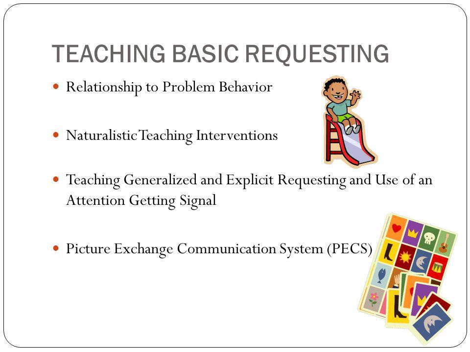 strategic instruction model sim