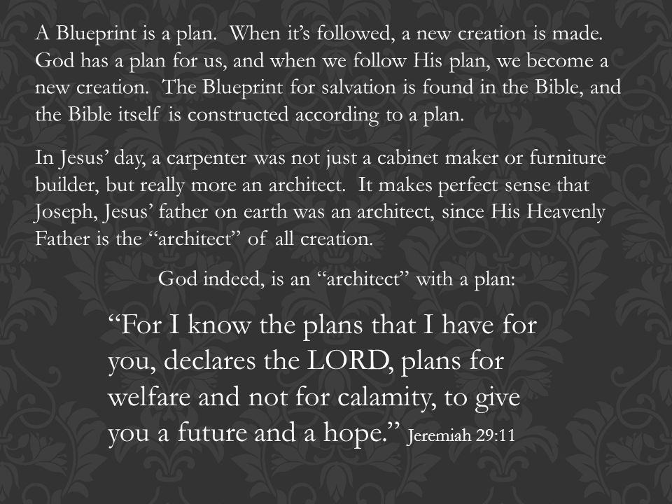The bible taken from the bible blueprint a catholics guide to a blueprint is a plan when its followed a new creation is made malvernweather Choice Image