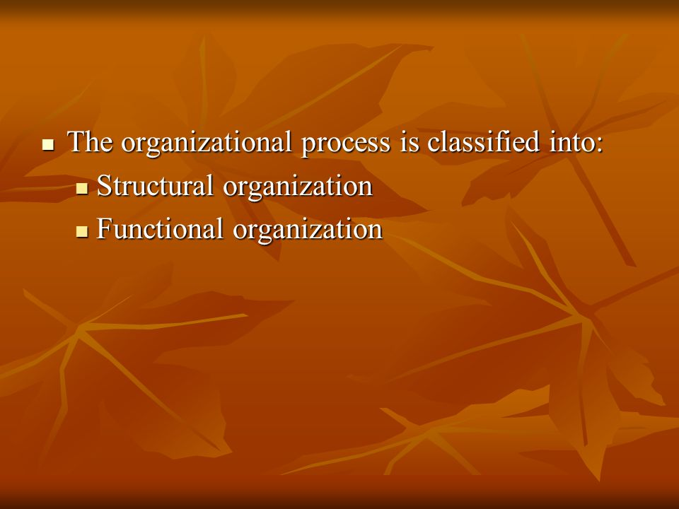 The organizational process is classified into: