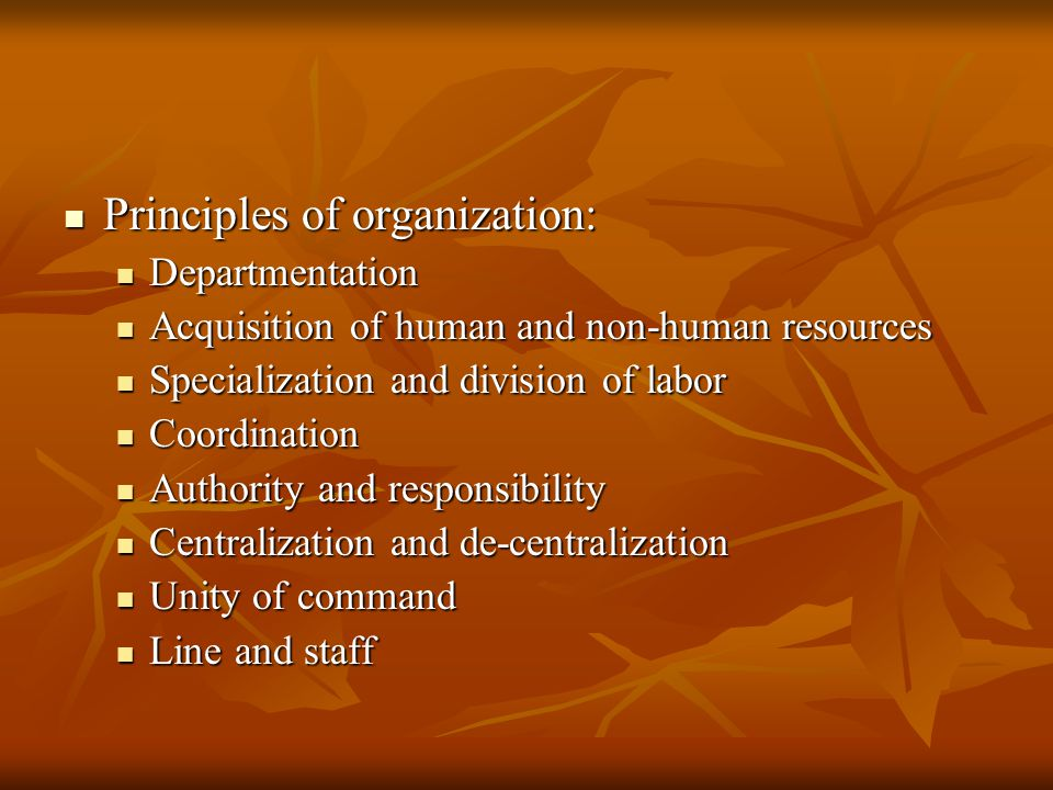 Principles of organization: