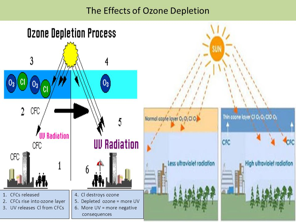 an analysis of the dangers of ozone depletion Depletion of ozone levels has been recorded around the globe with less ozone in the atmosphere, more ultravio- ing to the prediction and discovery of global ozone depletion and the damaging effects of cfcs followed a path full of twists and turns.