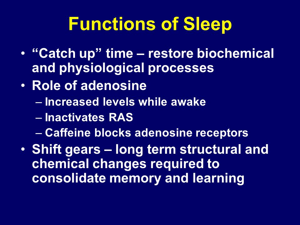 the role of sleep in learning Why is sleep important  stimulating the brain regions used in learning and developing new skills  morselli l et al role of sleep duration in the regulation .