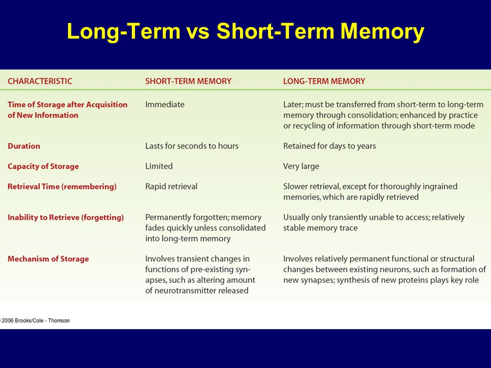 Short Term And Long Term Memory : The central nervous system ppt download