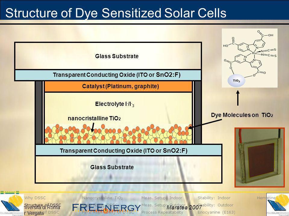 Structure of Dye Sensitized Solar Cells