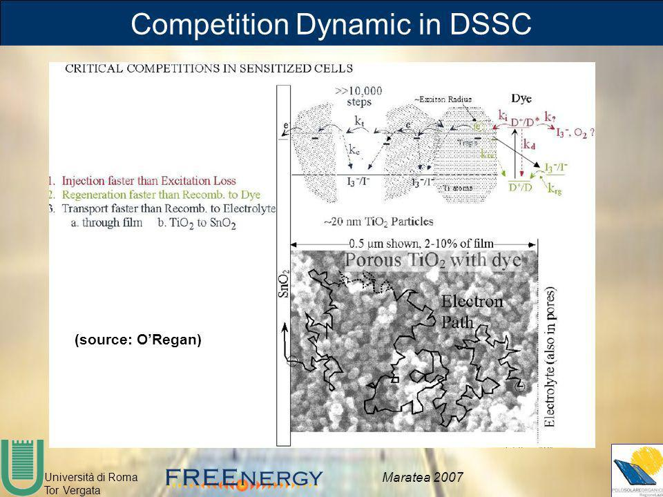 Competition Dynamic in DSSC
