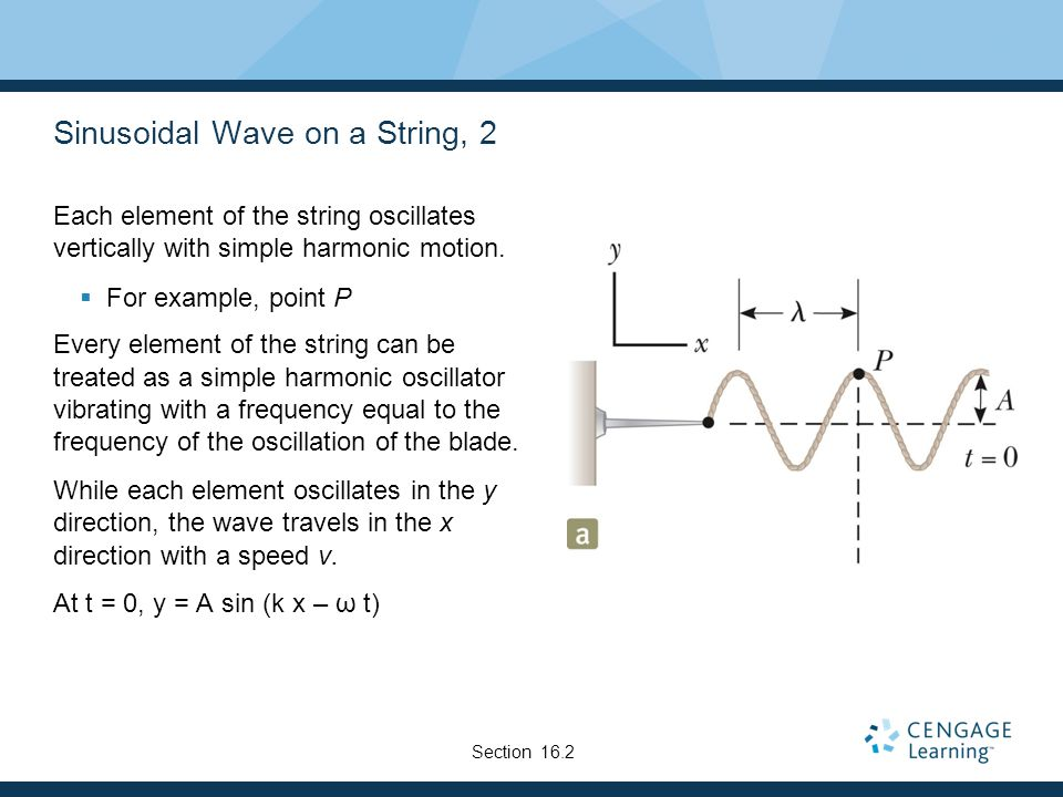 Sinusoidal Wave on a String, 2