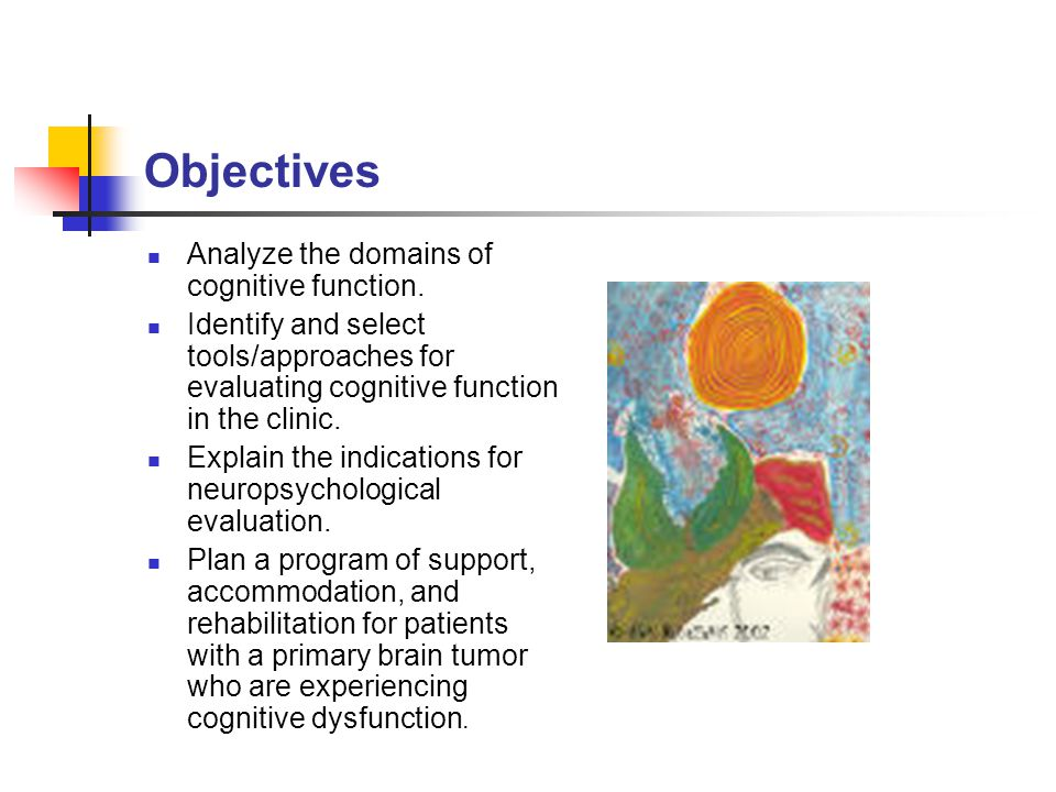What is cognitive function