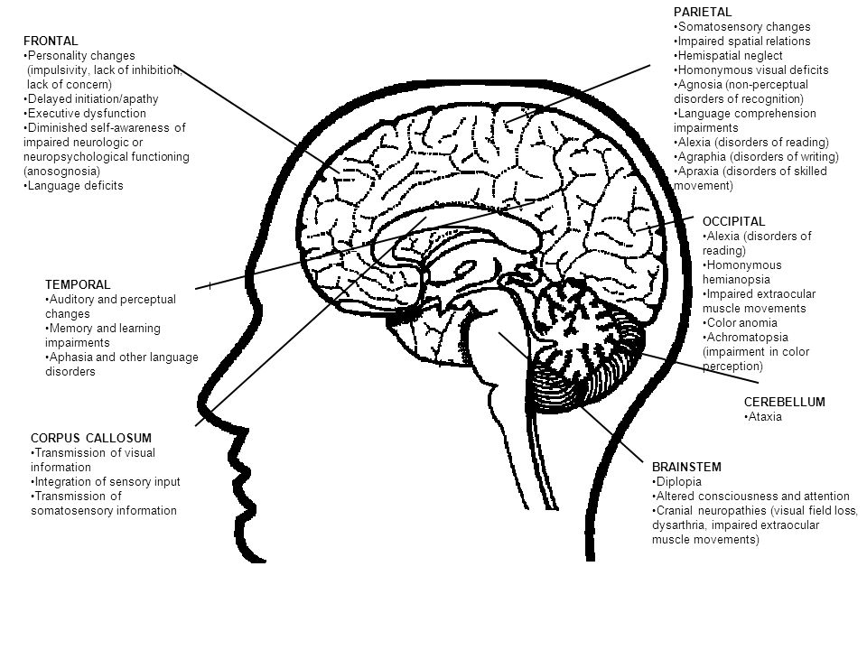 cognitive behavioural syndromes of neglect and anosognosia The cognitive neurosciences (xxii cycle) behavioural monitoring disorders in unilateral spatial neglect:  anosognosia for neglect syndrome.