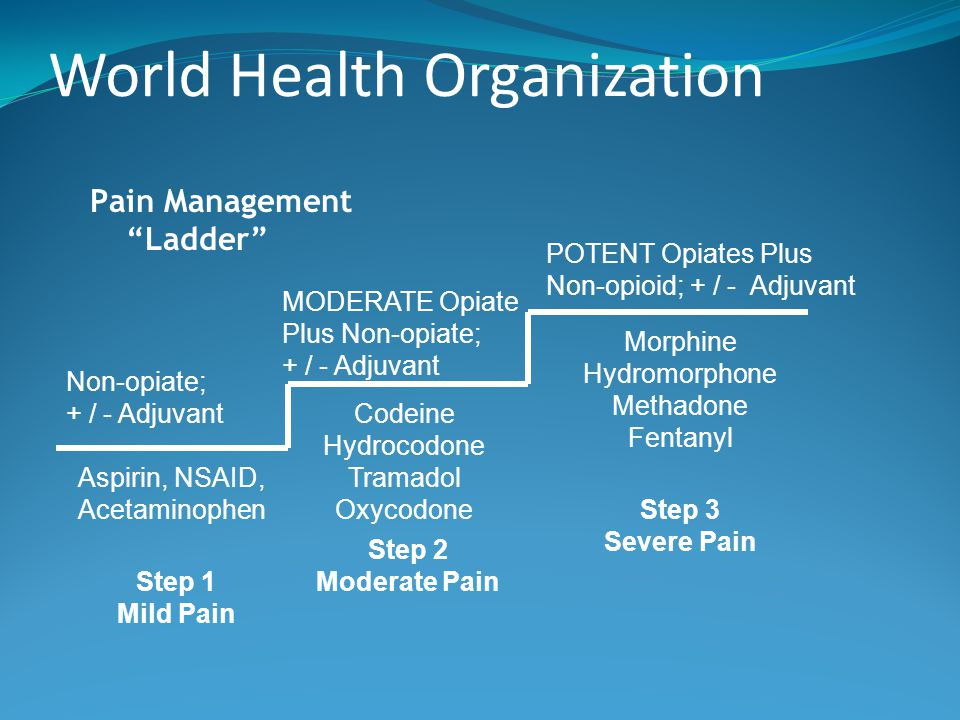 who ladder for pain management pdf