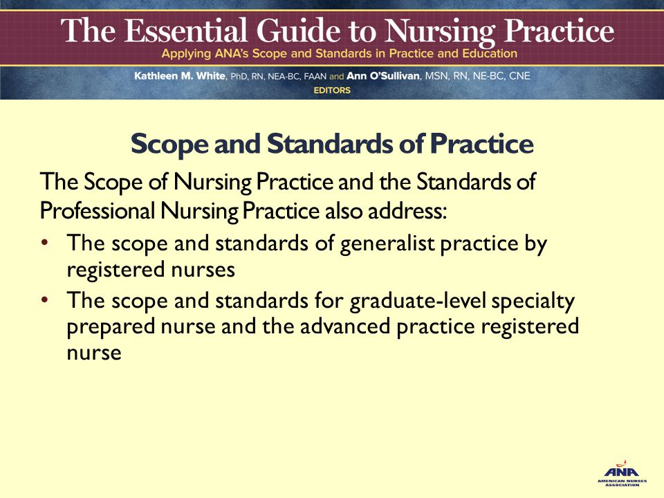 Process for developing Nursing Standards of Practice Essay Sample