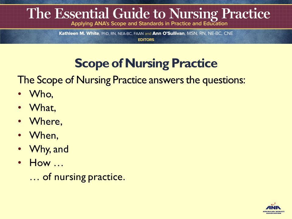 nursing standards of practice pdf