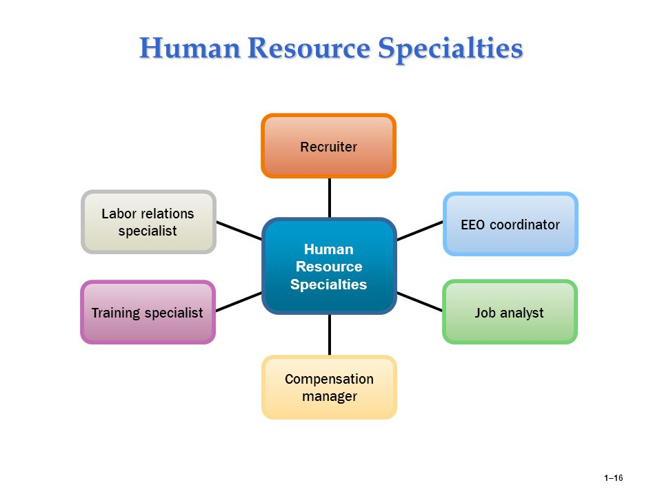 human resource management need to play Importance of hrm for organizational success there is a need to align organizational goals with that of the human resource management best practices in.