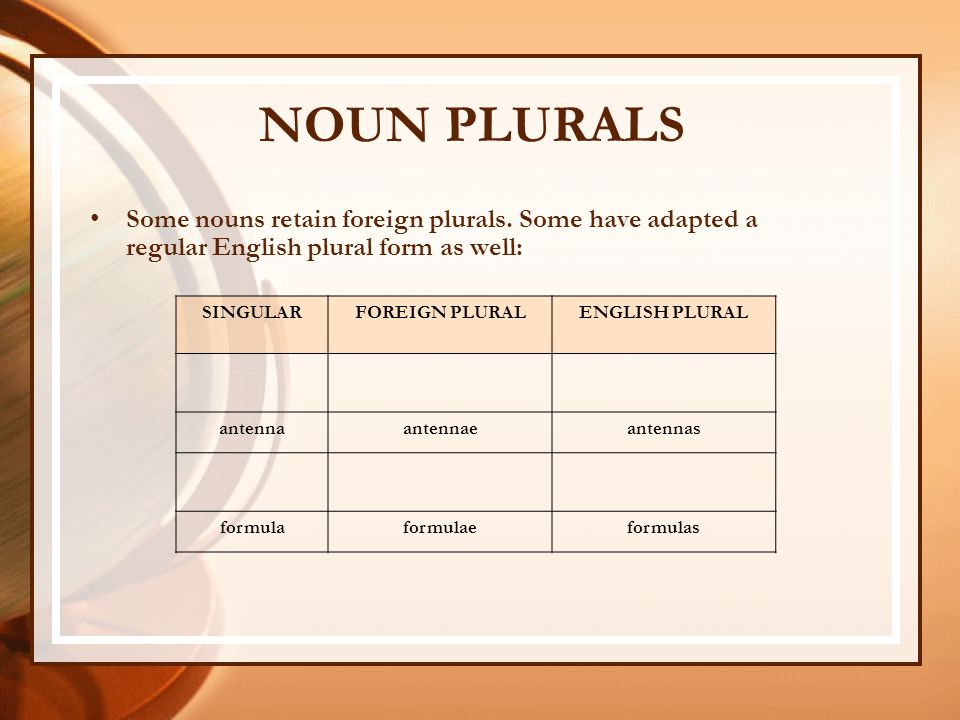 how to write a personal plural thesis irregular plural nouns