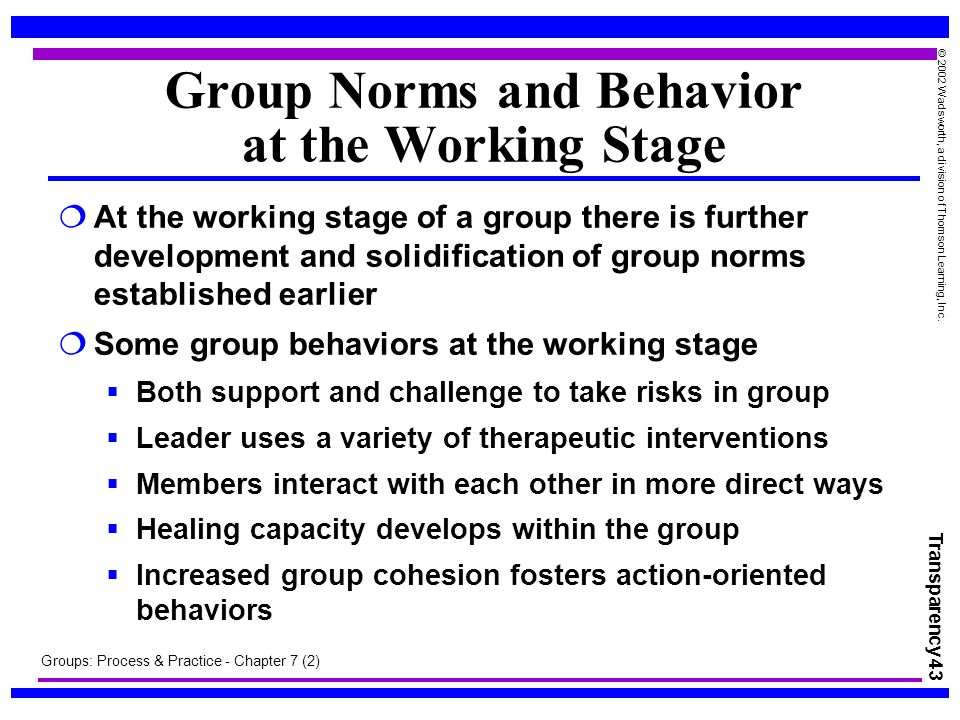 group behavior and process Behavior, structure, processes (co-authored with james l gibson, james h   teams, group dynamics, group decision making, leadership, and managing.