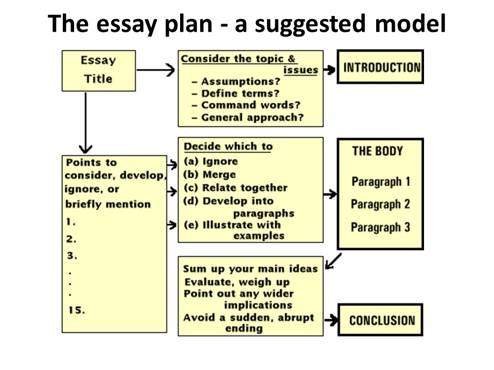 the essay below demonstrates the principles of writing a basic essay Use this sample basic essay as a model the essay below demonstrates the principles of writing a basic essay the different parts of the essay have been labe.