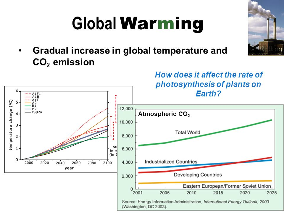 global warming and photosynthesis As such, if temperature acclimation increases global photosynthetic during warmer months, when acclimation increased photosynthesis by.