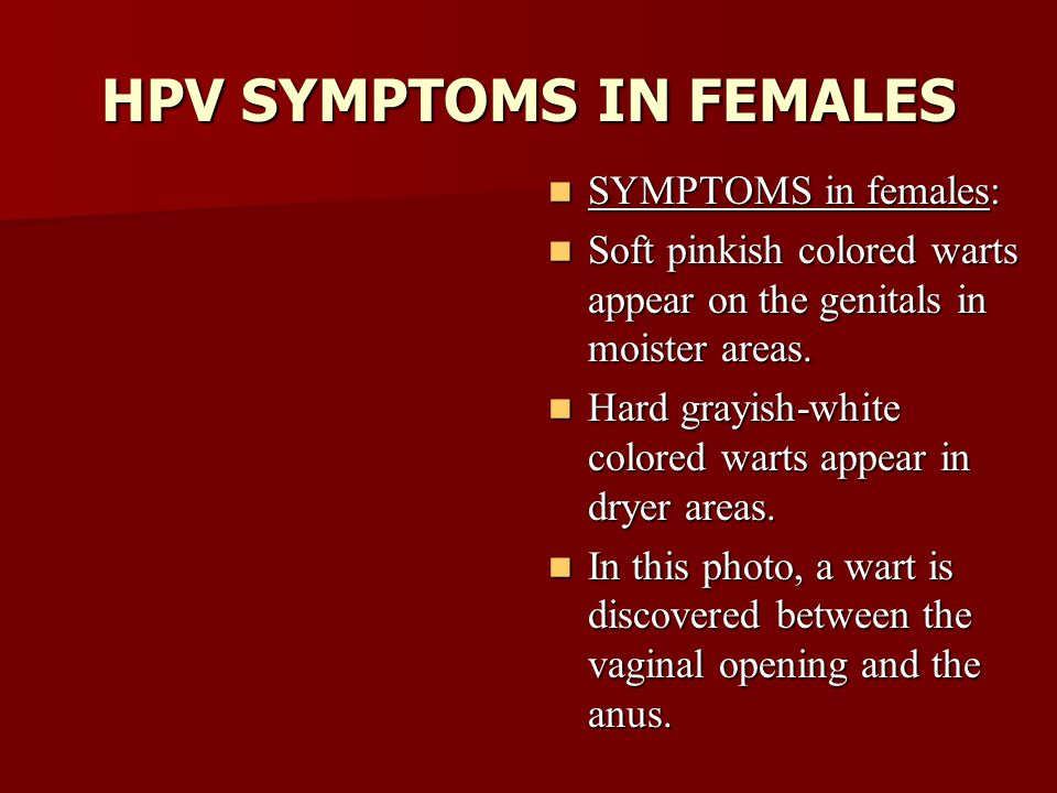 sexually transmitted infections - ppt video online download, Skeleton