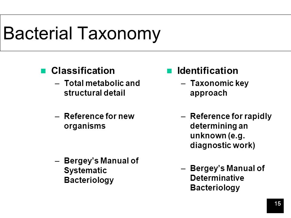 notes on taxonomy bacteria Bacterial taxonomy is the taxonomy, ie the rank-based classification, of bacteria in the scientific classification established by carl linnaeus , [1] each species has to be assigned to a genus ( binary nomenclature ), which in turn is a lower level of a hierarchy of ranks (family, suborder, order, subclass, class, division/phyla, kingdom and.