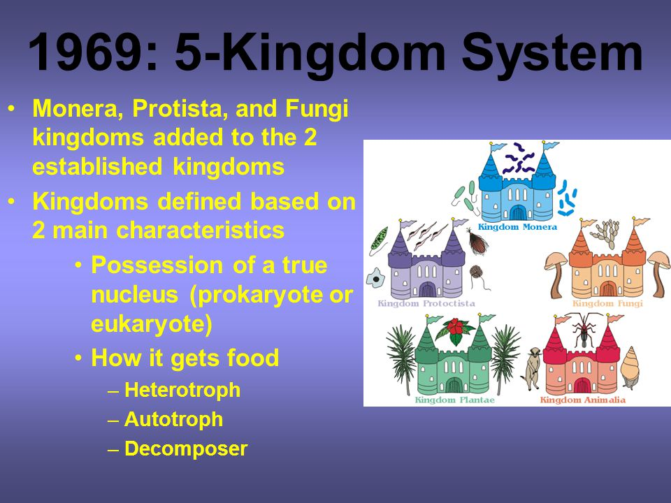 1969: 5-Kingdom System Monera, Protista, and Fungi kingdoms added to the 2 established kingdoms. Kingdoms defined based on 2 main characteristics.