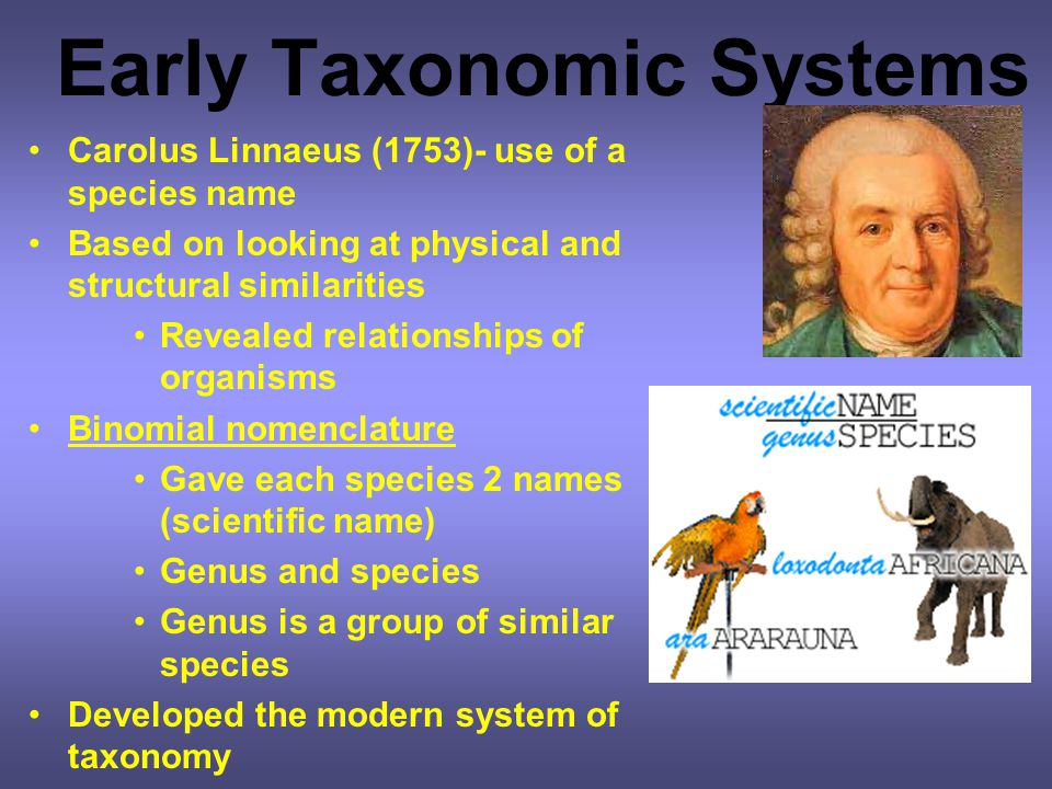 Early Taxonomic Systems