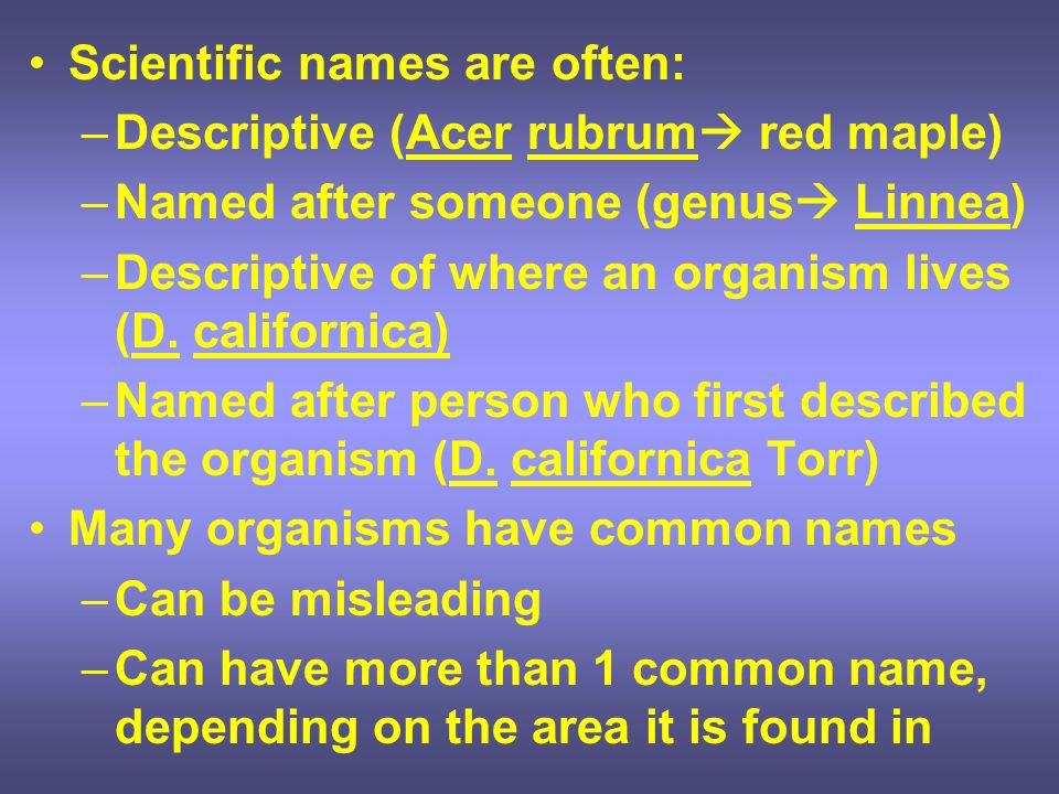 Scientific names are often: