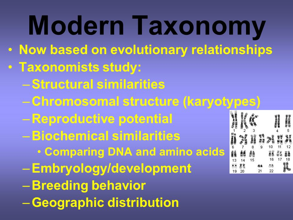 Modern Taxonomy Now based on evolutionary relationships
