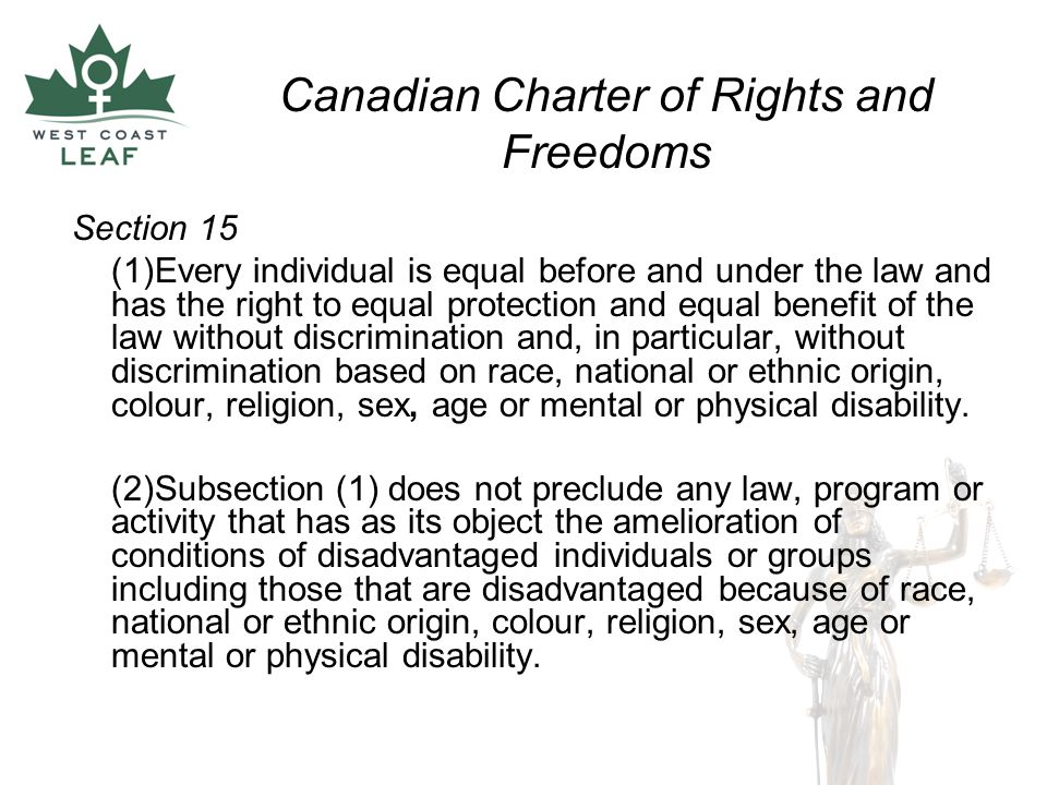 Section 8 Charter Of Rights And Freedoms 28 Images