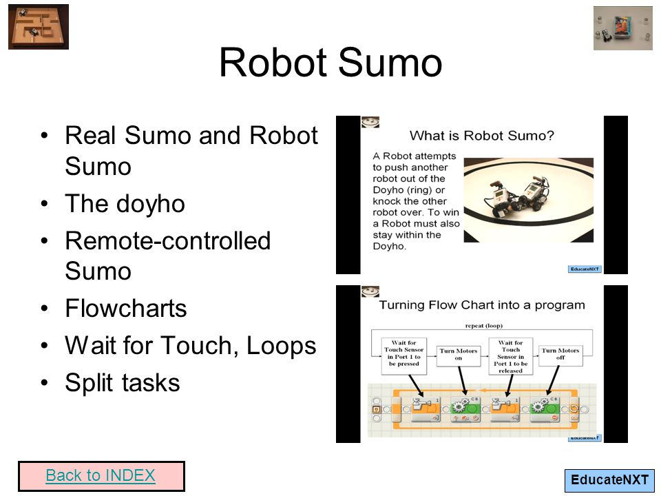 Robot Sumo Real Sumo and Robot Sumo The doyho Remote-controlled Sumo