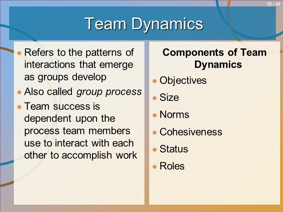 Components of Team Dynamics