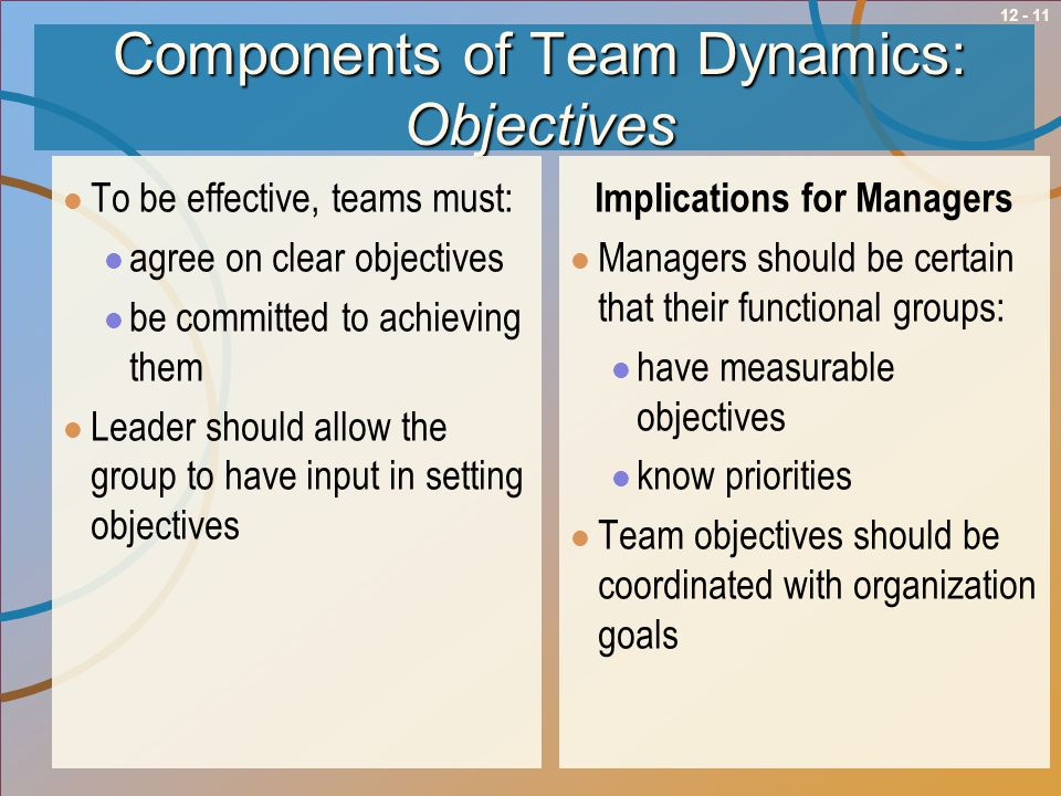 Components of Team Dynamics: Objectives