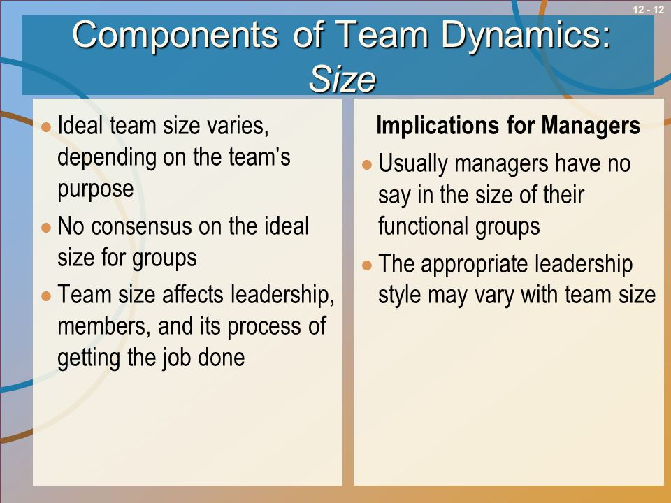 Components of Team Dynamics: Size